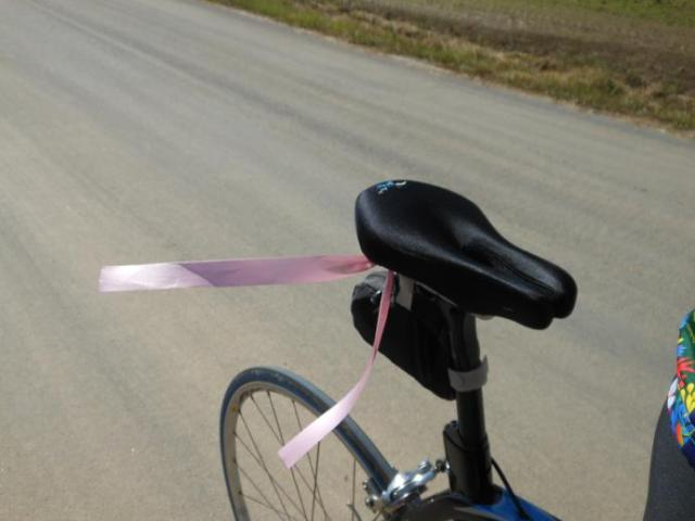 Ridin' for Pink